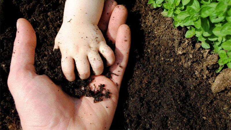 biogas waste fertilizer