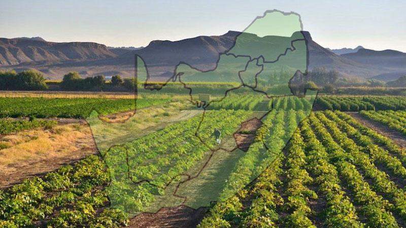 fertilizer in south africa