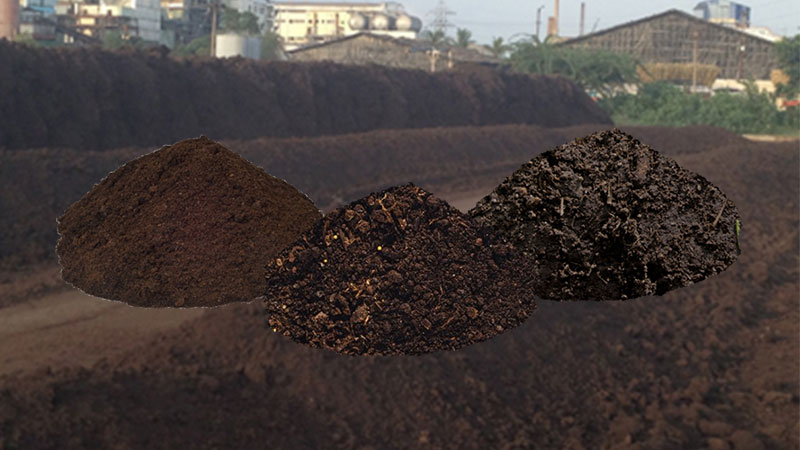 filter mud compost