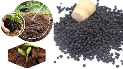 organic fertilizer quality factor